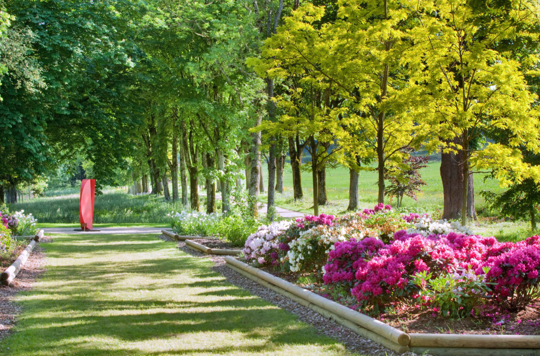 jardindesiris_muni's_garden