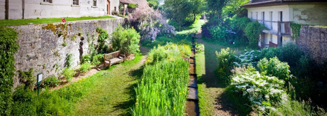 jardindesiris_secret_garden