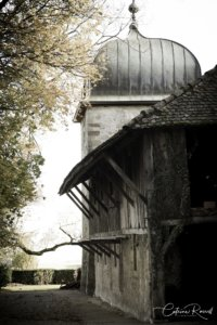 Tour médiévale du Château