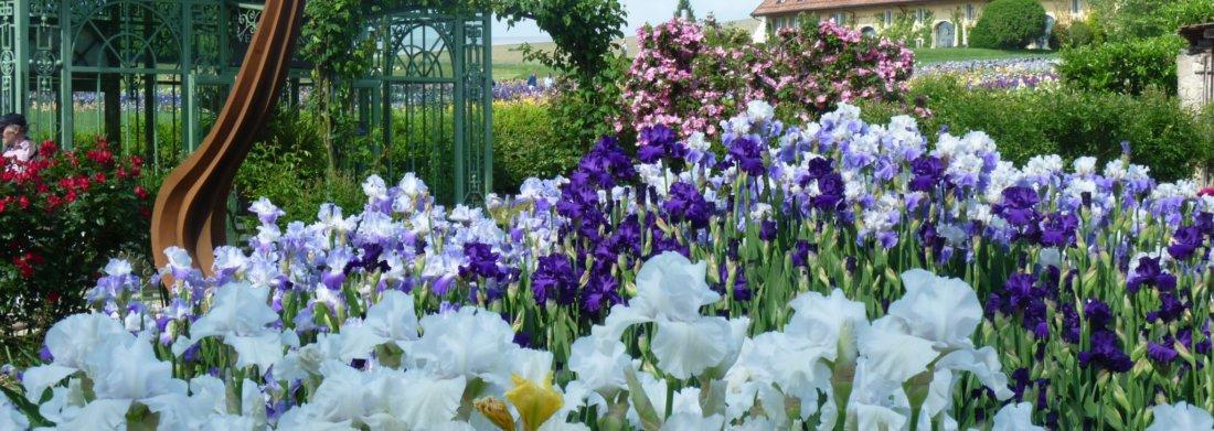 herbert_mehler_art_sculpture_jardin_des_iris