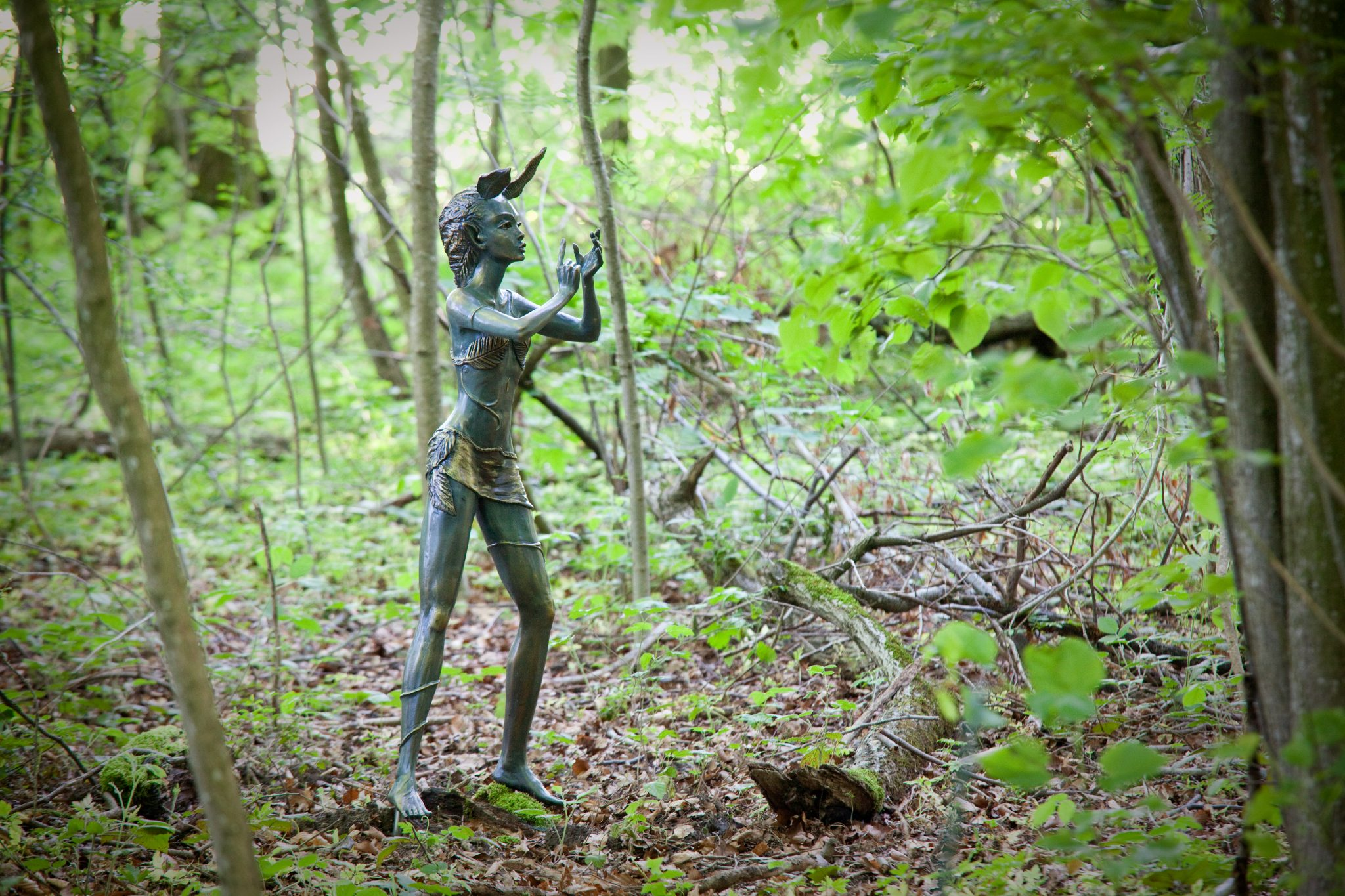 Entchanted_woodland_jardin_des_iris_regiscolombo