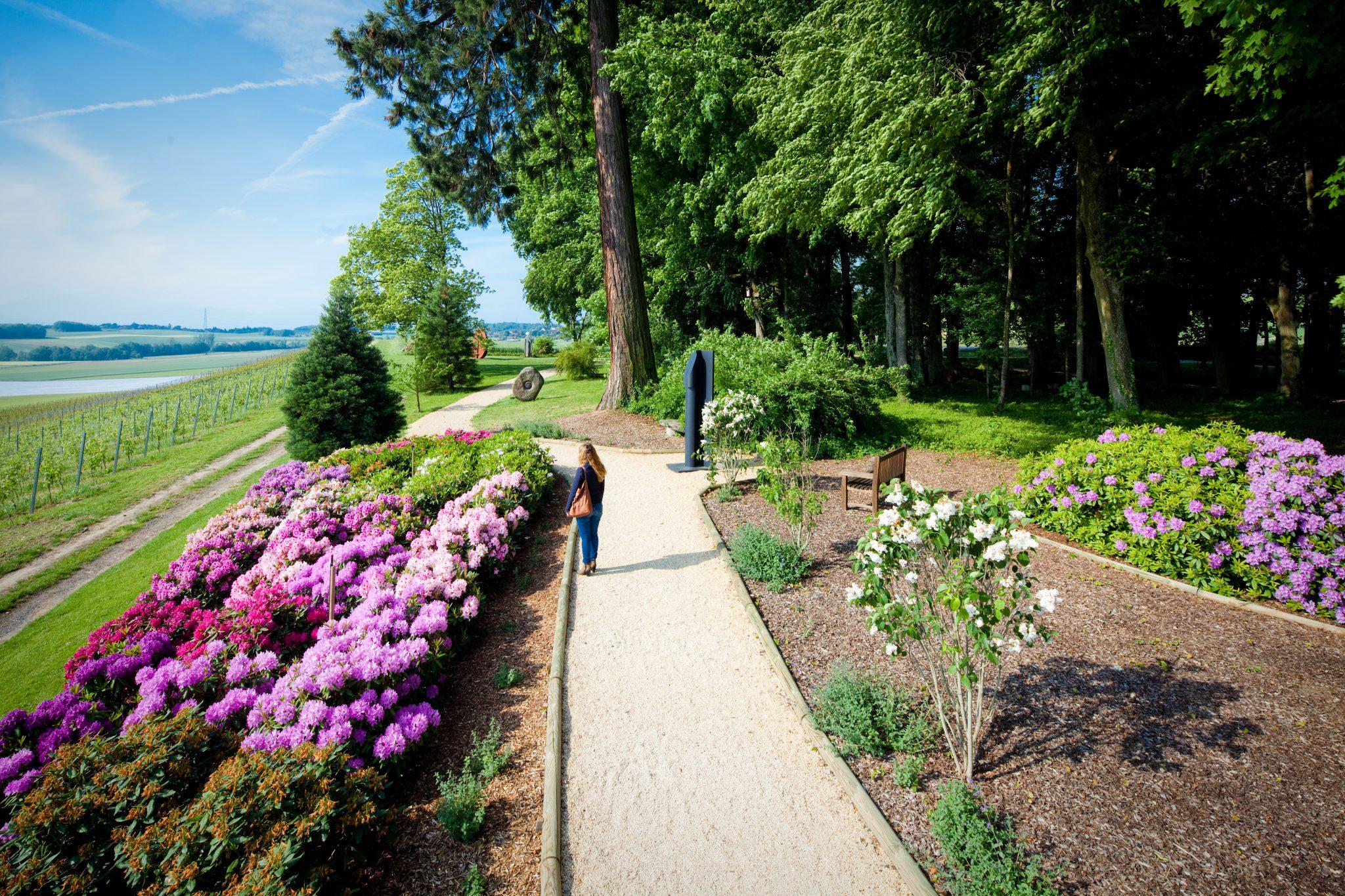 daria_garden_jardin_des_iris_regiscolombo