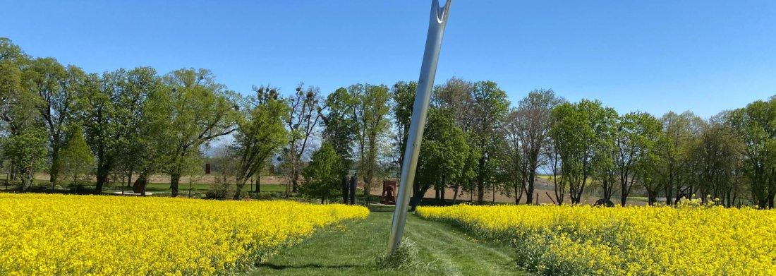 L'aiguille de Nicole Dufour entourée de champs de colza.