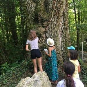 Enfants devant le Roi Lézard dans la forêt.