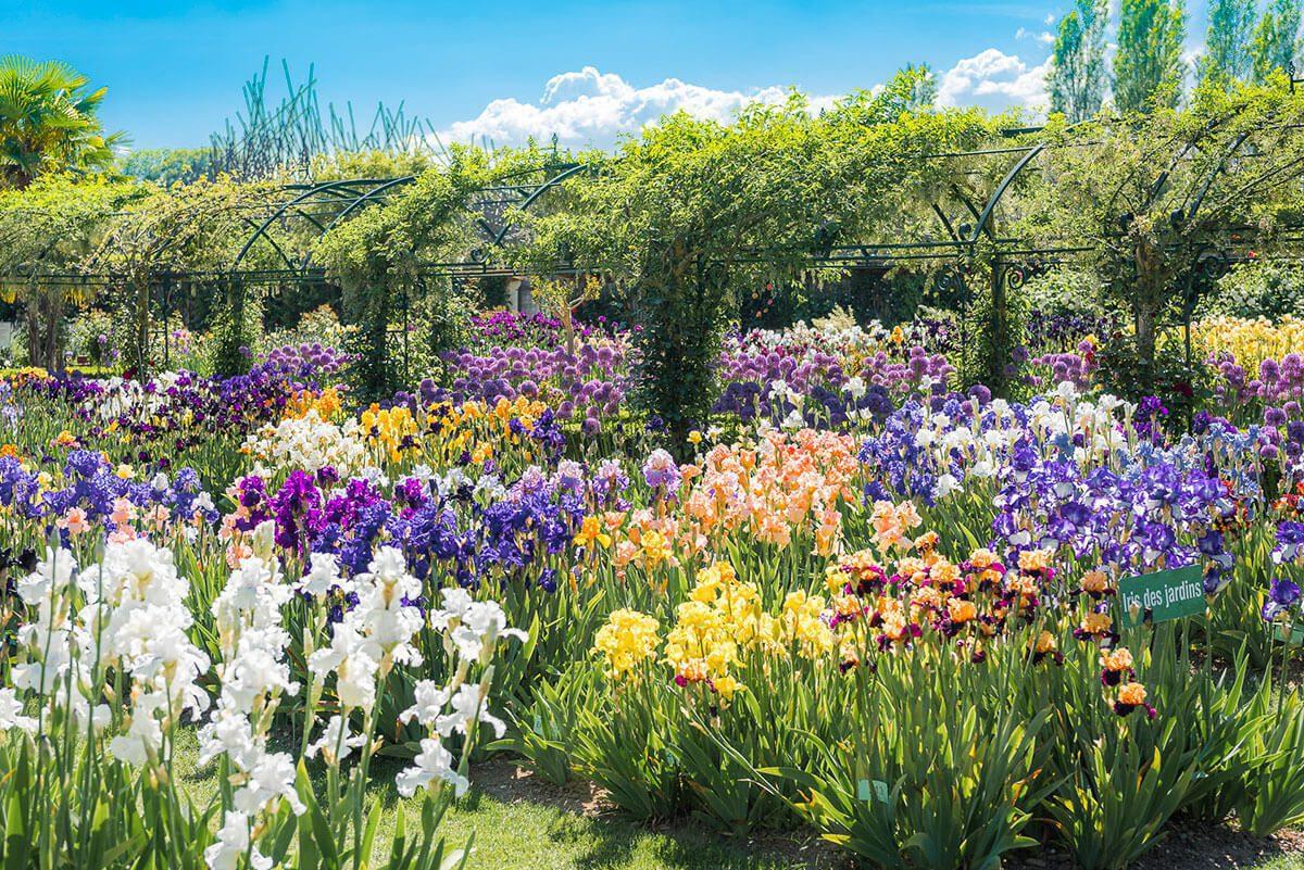 chateau vullierens jardins - Pass de saison adulte