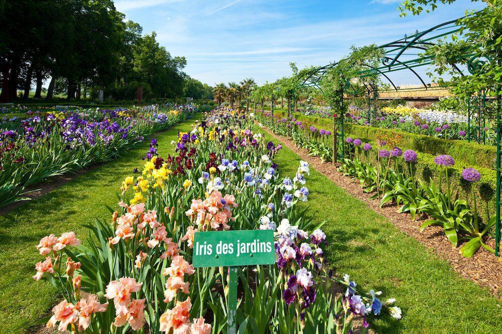 Vue d'ensemble du jardin de Doreen en pleine floraison.