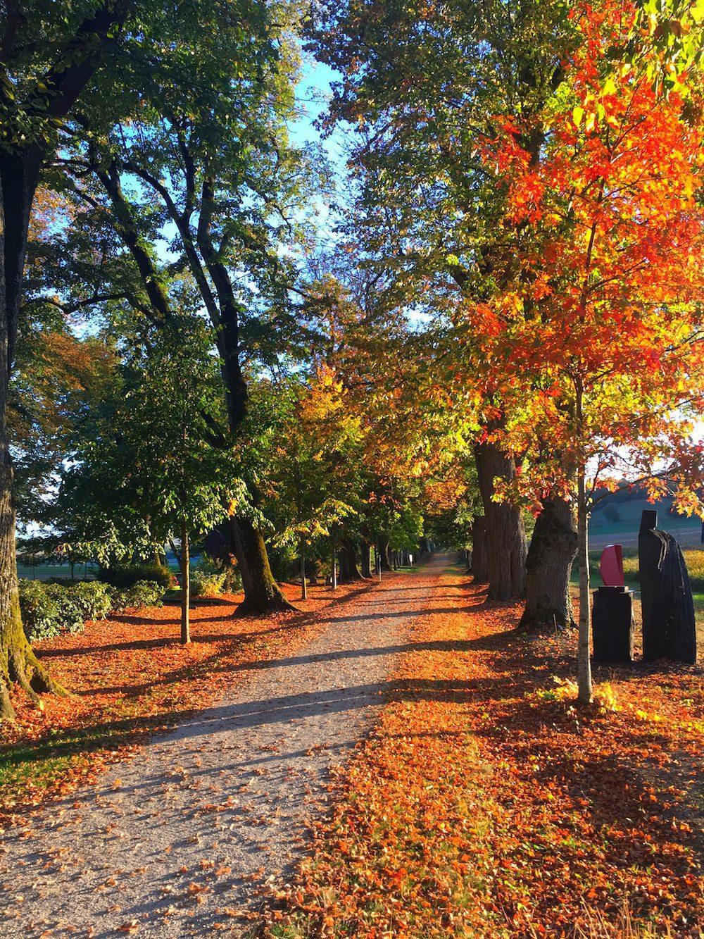 L'allée cavalière rouge feu en automne.