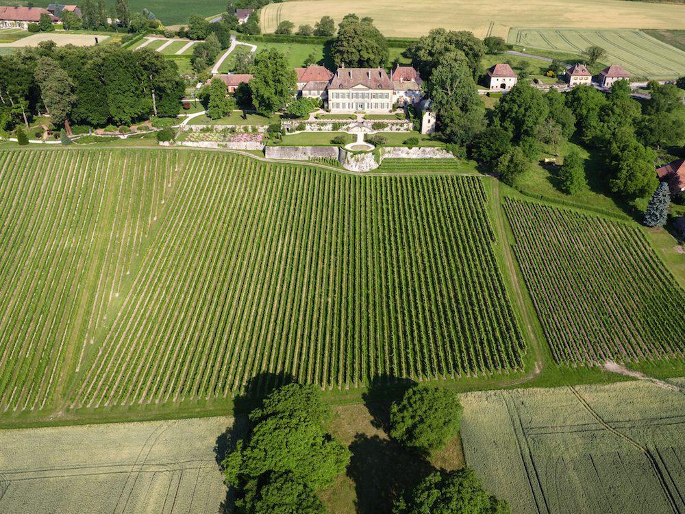 Vue aérienne des vignes du Château.
